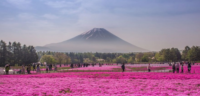 اليابان .. سحر الطبيعة
