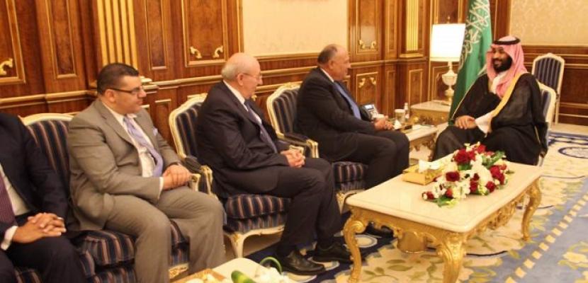 شكري ينقل رسالة شفهية من الرئيس السيسى إلى الملك سلمان