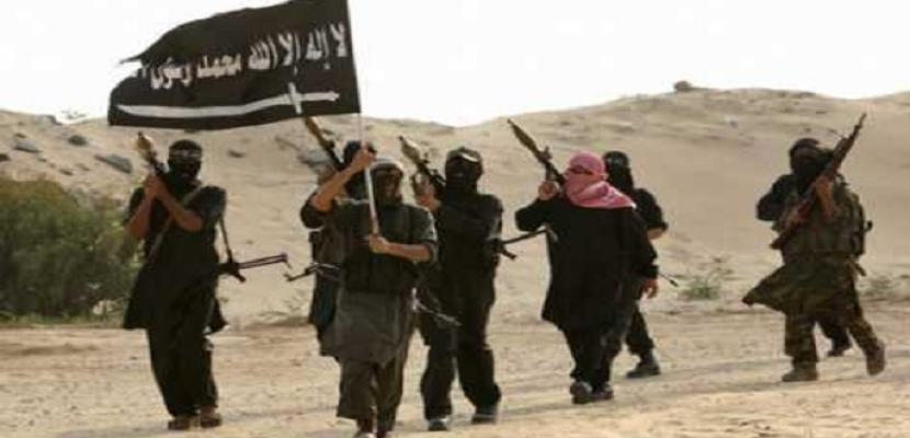 الاستخبارات الدنماركية: تنظيم القاعدة لديه طموح في مهاجمة الغرب مع تقهقر داعش