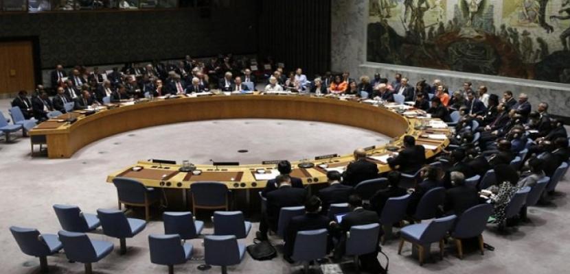 أمريكا وروسيا ترفضان مشروع قرار في مجلس الأمن الدولي لإدانة العملية التركية في سوريا