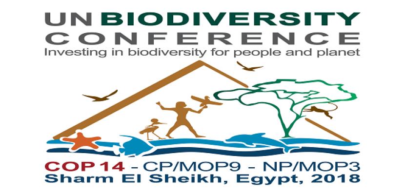 انطلاق المؤتمر العالمى للتنوع البيولوجى برعاية الرئيس السيسى بشرم الشيخ اليوم