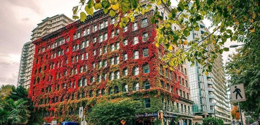 فندق تاريخي يتغير لونه مع فصول السنة