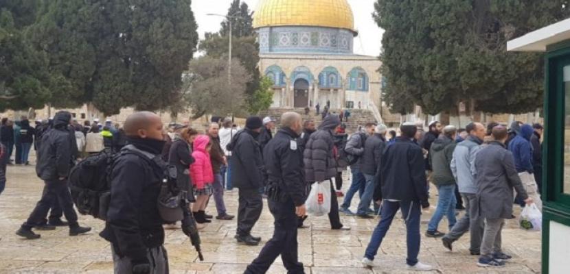 مستوطنون يقتحمون الأقصى والاحتلال يستدعي محافظ القدس للتحقيق
