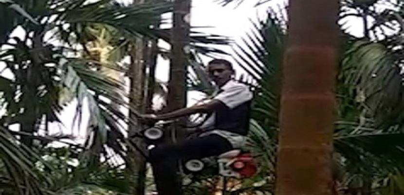 """مزارع هندى يصنع """"دراجة شجرية"""" ويطرحها للبيع"""