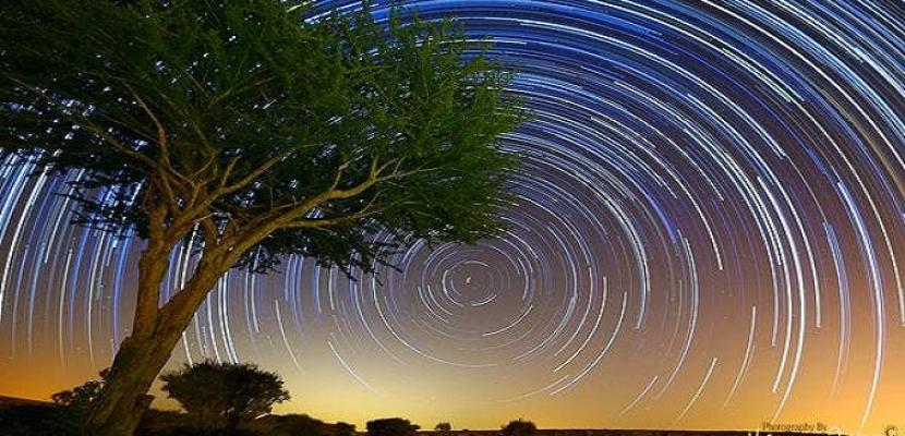 بالصور .. فنان يوثق حركة النجوم