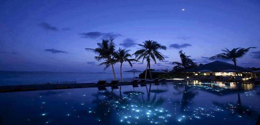 بحر النجوم فى جزر المالديف