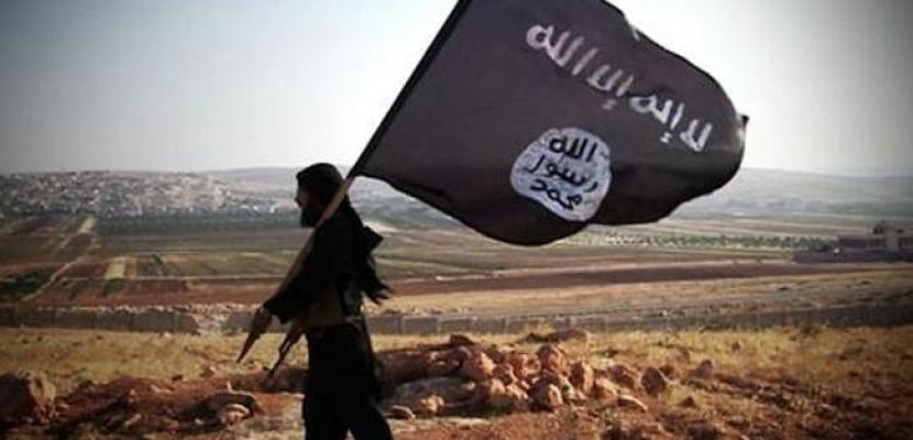 داعش .. بعد سنتين من الهزيمة .. خلايا نائمة بلا ذئاب منفردة