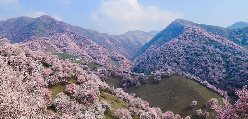 جبال الصين الملونة .. روعة وجمال يفوق الحدود