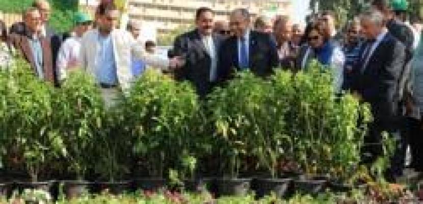وزير الزراعة يفتتح معرض زهور الخريف في نسخته الأولى بالمتحف الزراعي