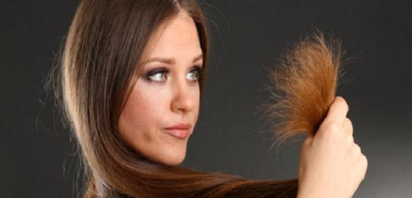 تنعيم الشعر الجاف بزيت بذور العنب