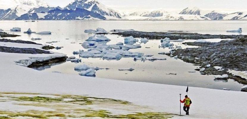 الثلج الأخضر يزحف على القطب الجنوبي بسبب تغير المناخ