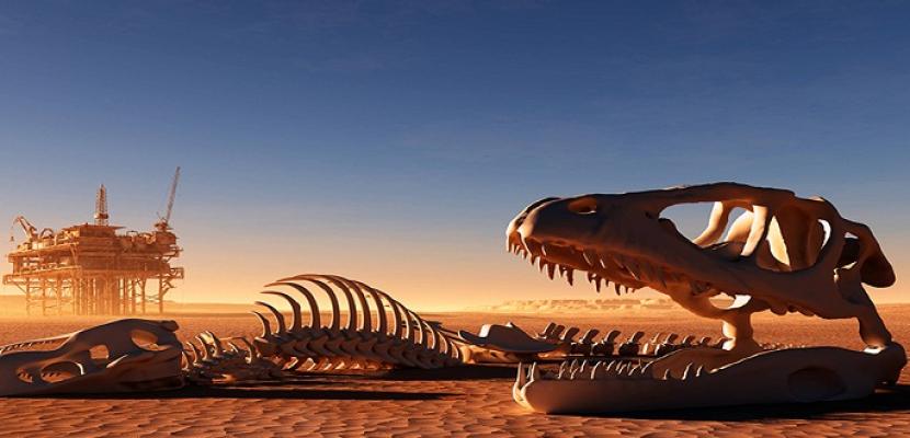 علماء يعثرون على بقايا آخر ديناصور مفترس على الأرض