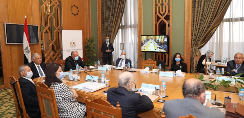بالصور.. وزير الخارجية: جهود الارتقاء بحقوق الإنسان في مصر تتأسس على توجيهات الرئيس السيسى