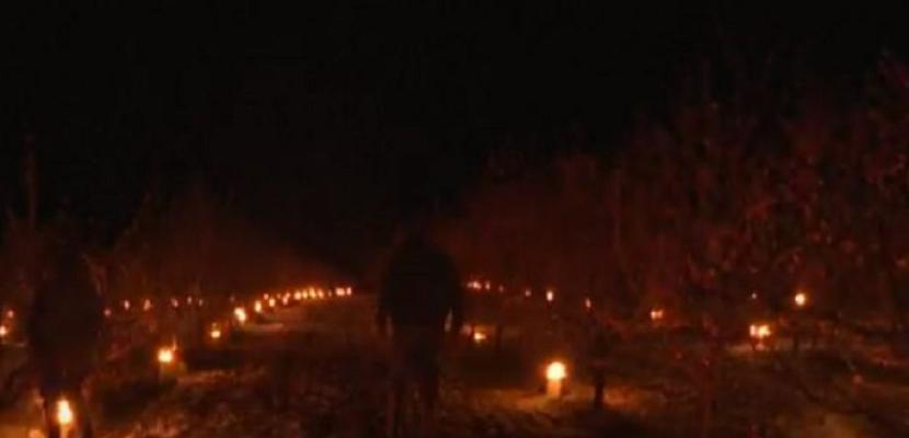 سكان بلدة فرنسية يشعلون الشموع وسط بساتين الفاكهة لتدفئتها