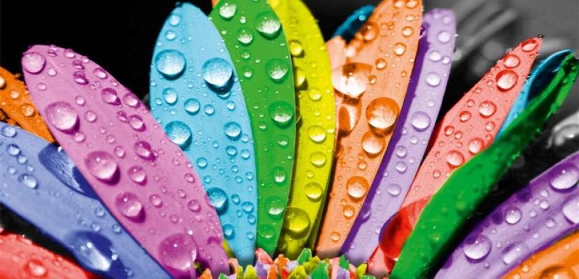 4 ألوان يمكن أن تجعلك سعيدا وتحسن مزاجك