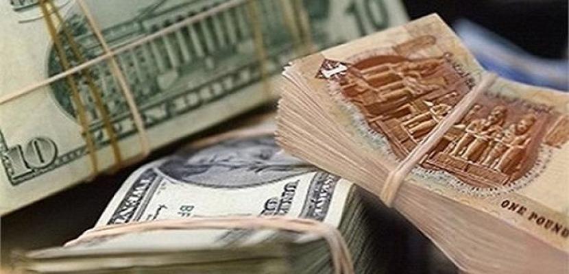 استقرار سعر الدولار أمام الجنيه المصرى