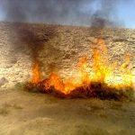 الجيش يحرق مواد مخدرة